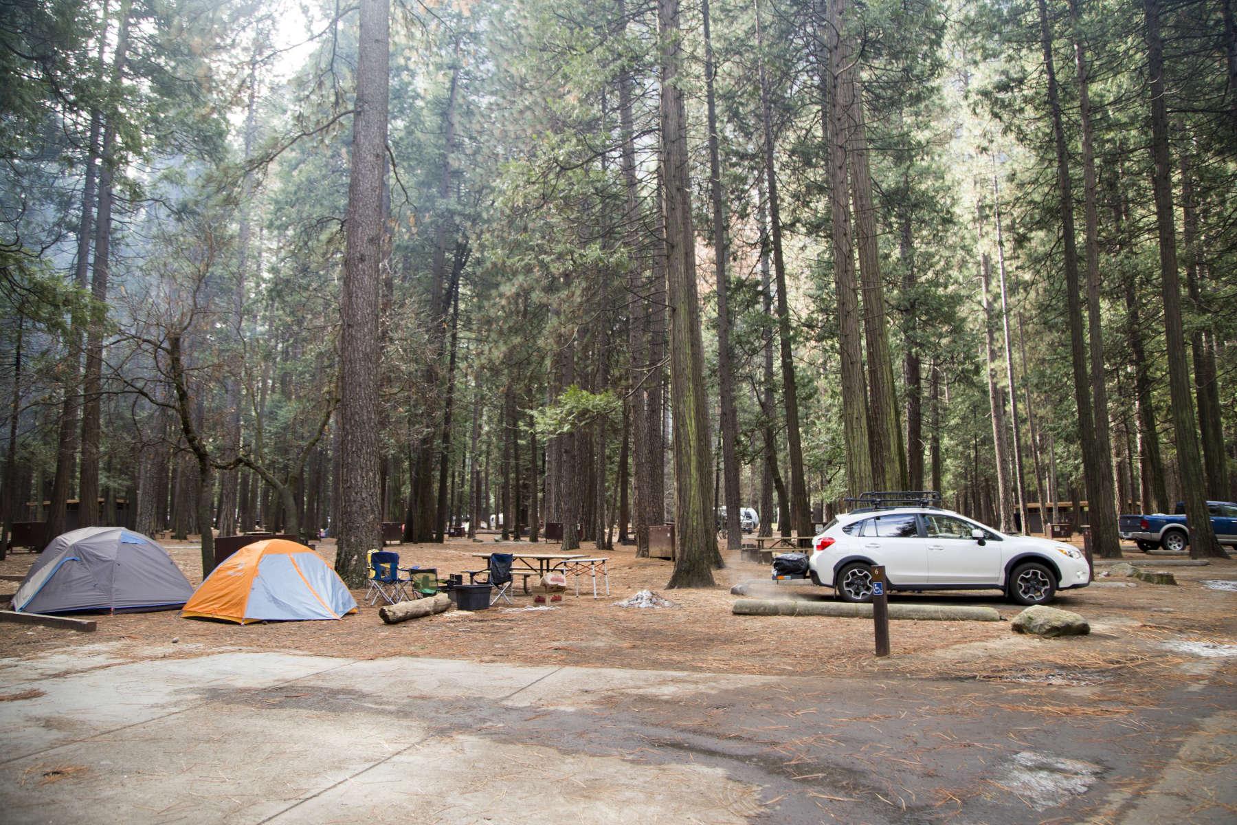 Upper Pines Campground, Yosemite, CA: 55 Hipcamper Reviews ...