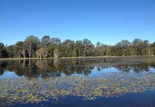 Sylva Lagoons Day visitors
