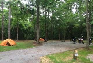 Campsite 11 at Cedar Point Campground