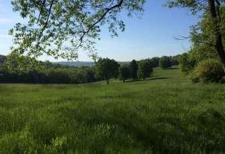 Tomlinson Run Campground