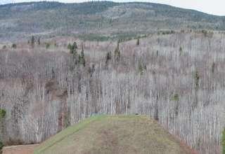 Gitwangak Battle Hill National Historic Site