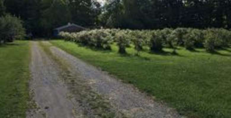 The 30 Best Campgrounds Near Port Clinton Ohio