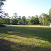 Gypsy Field