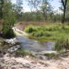Leichhardt Creek Organic Farm campsite 1