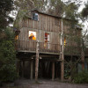 Spa Treehouse Glamping