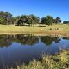 Kookaburra Camping & Caravan Park