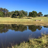 Kookaburra Camping & Parking Sites