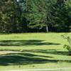 Bunyip's Under the Pine - Primitive