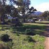 Bush Campsites
