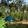 Walk in Private Tent-site