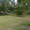 Kookaburra Hills Kangaroo Site 7