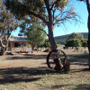 The Farm Shack
