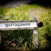 Gurragawee -Children under 12years.