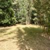 Bamboo Paradise (no toilet/shower)