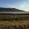 Rivertree Farm - The Paddock #1
