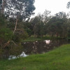 Dam Side camping