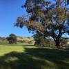 Riverton - Hill Side Paddock