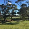 Riverton - Tiny Creek Paddock