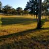 Kookaburras on Curra, Family Sites