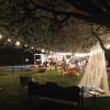 Glamping Tent - Near Tiny House'