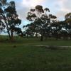 Riverton - Tent Paddock