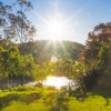 Camping by the Mitta Mitta River
