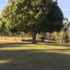 Spring Winds Camper Trailer