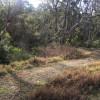 Kellyville Acreage Van Site