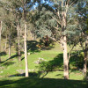Nillawarre Corner Camp