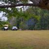 Wolvi Grove Campground
