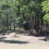 Dargo Riverside Paddock