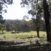 4. Creek side Bushcamping