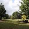 Garden site 2