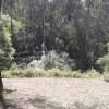 Merimbula Bushcamp7. SecludedGlade