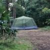 Wombarra Rainforest Pocket