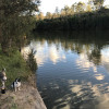 Mary River Farmstay - The River