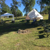 Pre-Erected Tents
