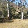 Wallaby Flat