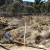 Calabash Spring Dam Paddock 60 acre