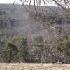 Calabash Spring Dam Paddock