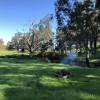 Kangaroo Gully