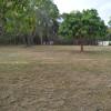 Mango Hill