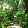 Hurlstone Garden Sites (Powered)