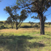 Tarinore Farm  Under the Elms (4WD)