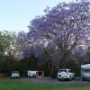 Powered Site at Kookaburra Park