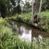 Dodona By The Creek - Site 2