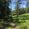 Gum Tree Gully Camp (4WD Only)