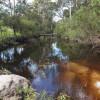 Stonepine Ridge: Bookookarara Creek
