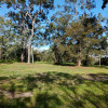 Grass Tree Reserve