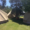 Glamping Tent - Near Homestead
